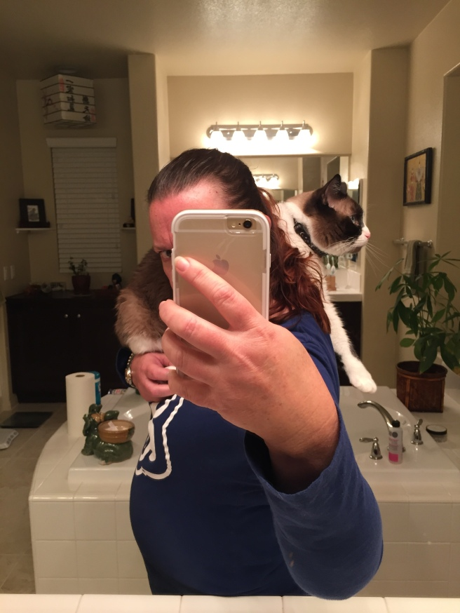 Shoulder Cat